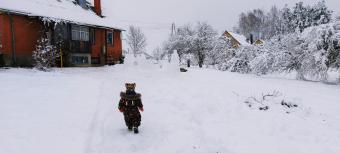 Sanitas un Kaspara Loginu Ziemas pils Mērdzenē