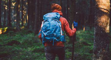 Maija nogalē uzsākta Latvijas dabas vērtību apzināšanu