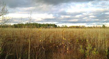 Paziņojums par ietekmes uz vidi novērtējuma ziņojuma iesniegšanu VPVB
