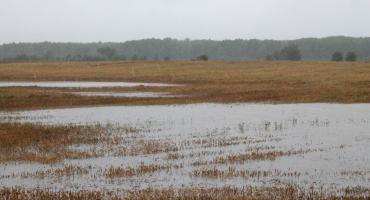 Pieteikties kompensācijām plūdu radītajiem zaudējumiem varēs elektroniski