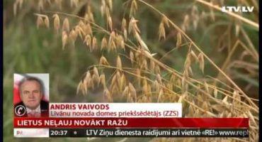 Lietus zemniekiem neļauj novākt ražu