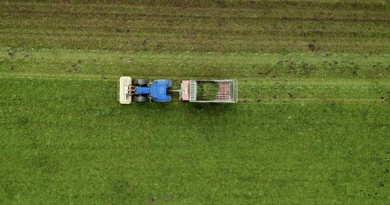 Latvijas Zemes fonds četros gados lauksaimniekiem iznomājis vairāk nekā 500 īpašumus gandrīz 11 000 ha platībā
