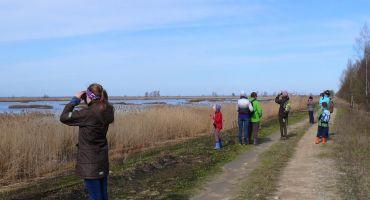 Oktobra sākumā aicina vērot putnu rudens migrāciju Eiropas Putnu vērošanas dienās